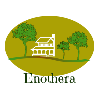 enothera logo